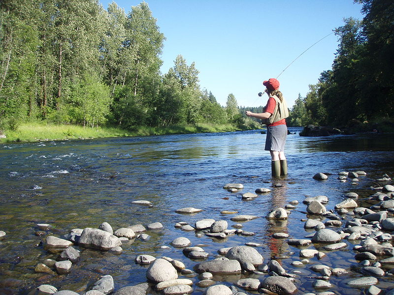 800px-Fly_fishing_on_the_South_Santiam